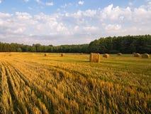 Paesaggio del campo di estate con Straw Rolls Immagine Stock