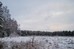 Paesaggio del campo di inverno nel tempo triste fotografia stock libera da diritti