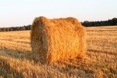 Paesaggio del campo del raccolto del mucchio di fieno Fotografie Stock