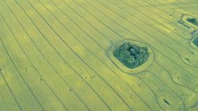 Paesaggio del campo in vista la vista aerea Fotografia Stock Libera da Diritti