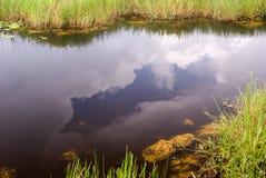 Paesaggio del canale dei terreni paludosi fotografia stock