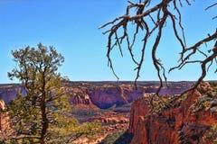 Paesaggio del canyon Immagini Stock Libere da Diritti