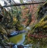 Paesaggio del canyon Fotografia Stock