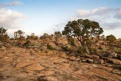 Paesaggio del canyon del fiume di Blyde, Africa immagine stock libera da diritti