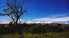 Paesaggio del cielo Fotografia Stock