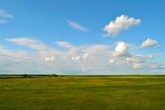 Paesaggio del cielo blu e dell'erba Fotografie Stock Libere da Diritti