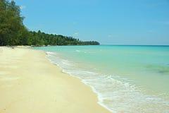 Paesaggio del cielo della palma della sabbia di Coral Sea Tropical Wild Beach immagine stock