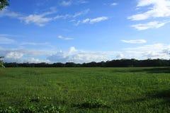 Paesaggio del cielo e del campo immagine stock libera da diritti