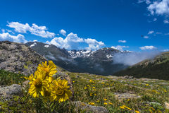 Paesaggio del Colorado Fotografie Stock