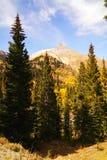 Paesaggio del Colorado Fotografie Stock Libere da Diritti