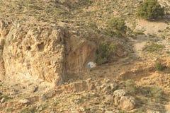 Paesaggio del Cretan Fotografia Stock