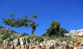 Paesaggio del Cretan Fotografie Stock