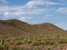 Paesaggio del deserto Fotografie Stock Libere da Diritti