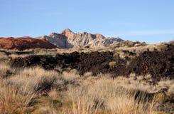 Paesaggio del deserto Fotografie Stock