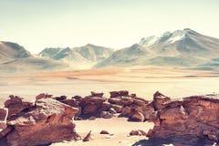 Paesaggio del deserto in Altiplano, Bolivia Fotografia Stock Libera da Diritti