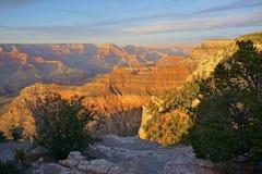 Paesaggio del deserto del parco nazionale dell'Arizona Grand Canyon Fotografia Stock Libera da Diritti