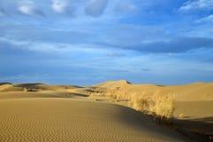 Paesaggio del deserto sotto il cielo drammatico Fotografia Stock Libera da Diritti