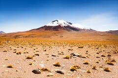 Paesaggio del deserto sul plateau Altiplano, Bolivia Fotografie Stock Libere da Diritti