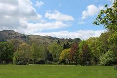 Paesaggio del distretto del lago con gli alberi ed i prati verdi fertili Immagini Stock Libere da Diritti