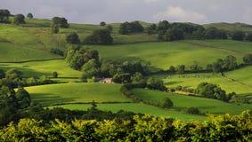 Paesaggio del distretto del lago, Cumbria Fotografie Stock