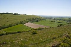 Paesaggio del downland del gesso in Dorset Fotografia Stock