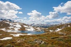 Paesaggio del fiordo Fotografie Stock Libere da Diritti