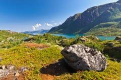 Paesaggio del fiordo norvegese fotografie stock