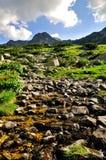 Paesaggio del fiume della montagna Immagine Stock