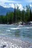 Paesaggio del fiume della montagna Immagini Stock