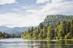 Paesaggio del fiume di Biya altai Natura russa Fotografia Stock Libera da Diritti