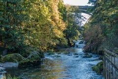 Paesaggio del fiume di Deschutes Fotografia Stock Libera da Diritti