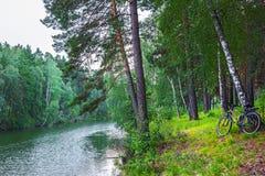 Paesaggio del fiume di estate con una bicicletta La Siberia, Russia Fotografia Stock Libera da Diritti