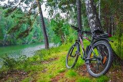 Paesaggio del fiume di estate con una bicicletta La Siberia, Russia Immagine Stock Libera da Diritti