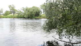 Paesaggio del fiume di Havel (Brandeburgo Germania) lungo Havelradweg (percorso della bici di Havel) video d archivio