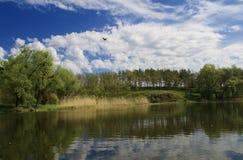 Paesaggio del fiume di ROS Fotografie Stock Libere da Diritti