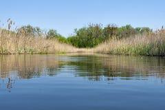 Paesaggio del fiume di ROS Immagini Stock