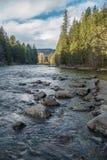 Paesaggio del fiume di Snoqualmie Fotografia Stock Libera da Diritti