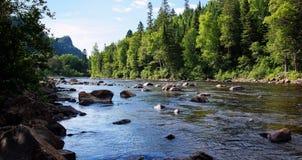 Paesaggio del fiume Salmon Fotografie Stock Libere da Diritti