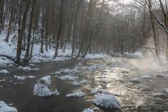 Paesaggio del fiume selvaggio con la riflessione del cielo di tramonto nelle montagne, nell'inverno Immagini Stock Libere da Diritti