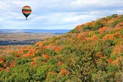 Paesaggio del fogliame nel New Jersey fotografie stock libere da diritti