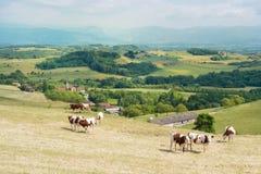 Paesaggio del francese Fotografia Stock