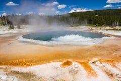 Paesaggio del geyser Immagini Stock