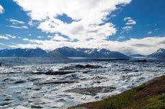 Paesaggio del ghiacciaio di Knik Immagine Stock