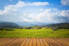 Paesaggio del giacimento del riso con il pavimento di legno e del cielo Immagine Stock