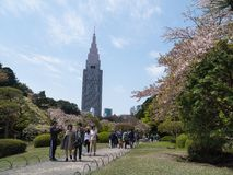 Paesaggio del giardino del cittadino di Shinjuku Gyoen Immagine Stock Libera da Diritti