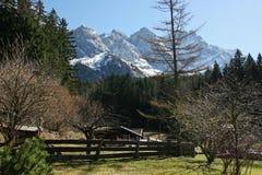 Paesaggio del giardino di inverno della montagna Fotografia Stock Libera da Diritti