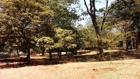Paesaggio del Kenya Fotografia Stock