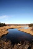 Paesaggio del Labrador Immagini Stock