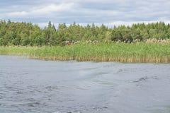 Paesaggio del lago Fotografie Stock