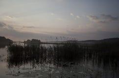 Paesaggio del lago al crepuscolo Fotografia Stock Libera da Diritti